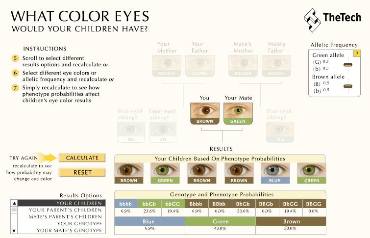 calculadora color ojos