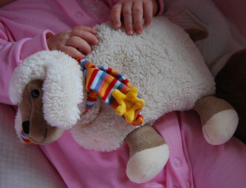colicos lactante oveja
