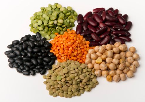 -different-species-of-legumes