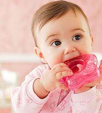 baby denticion