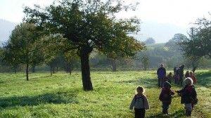 bosque escuelas