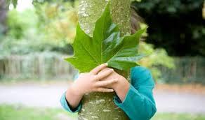 niño bosque