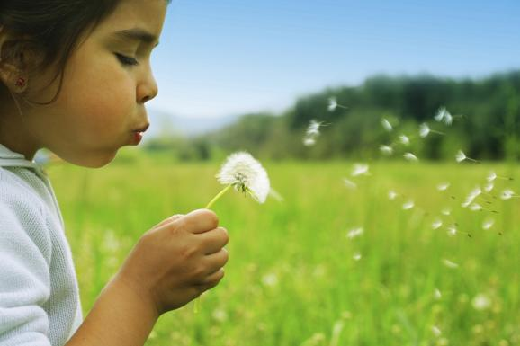tratorno por deficit de entorno natural en niños