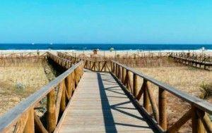 el descubrimiento de la playa