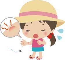 las picaduras de mosquitos en verano