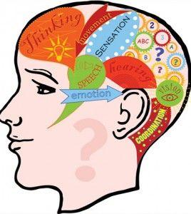 el desarrollo intelectual en niños