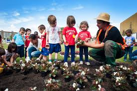 educar sobre jardinería