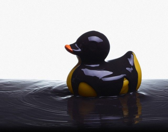 Rubber duck covered in oil