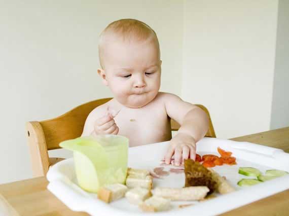 Blw o pur s qu m todo elegir blog sobre beb s y m s bebesymuchomas com - Pures bebes 6 meses ...