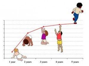 Percentiles OMS