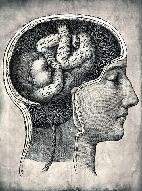 cerebro de un niño
