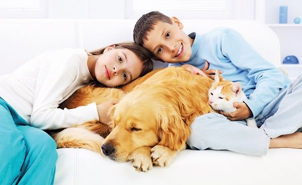 mascotas en casa nenes