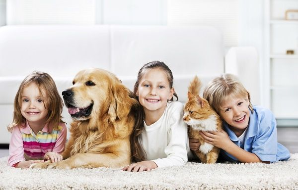Children with animals lying down on the carpet.